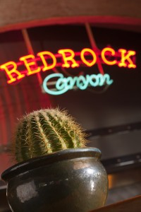 Residential 9 places Happy Hour Redrock_Cactus_V1